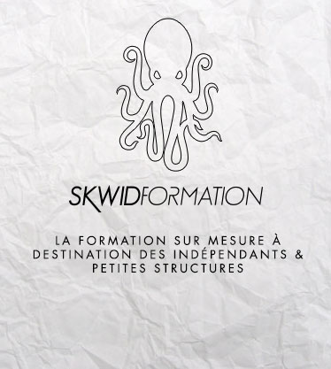 Skwid Formation - Stages et formations multimédia sur mesure à Lille (59)